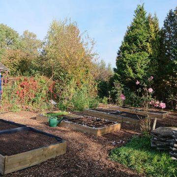 moestuinbakken op gemeenschappelijke tuin94